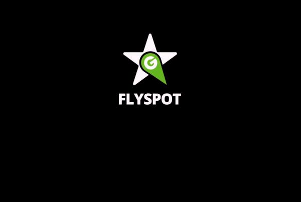 PL_FLYSPOT_01